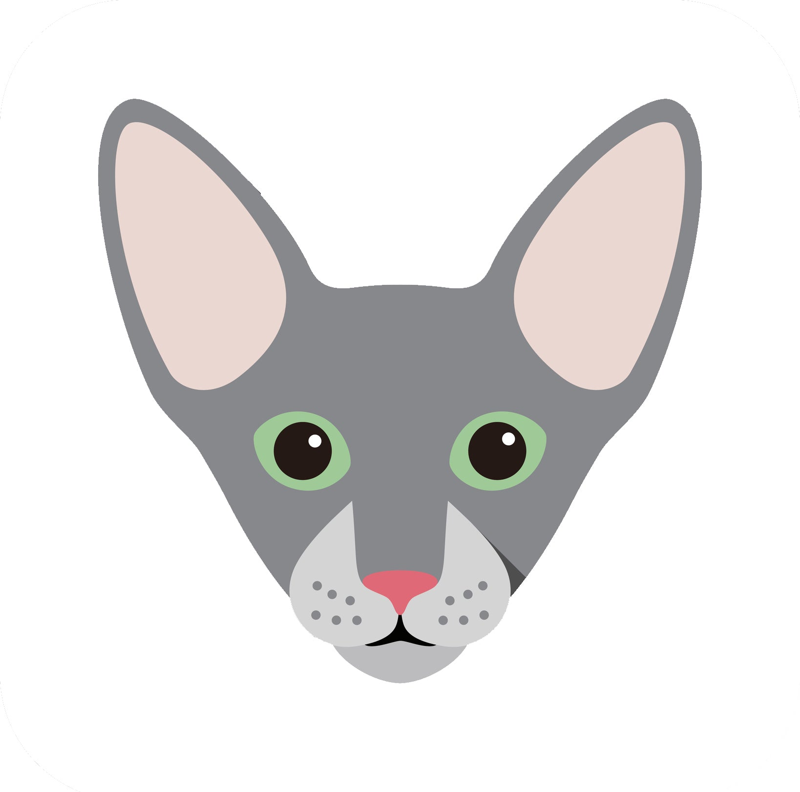Cute Gray Peterbald Kitty Cat Vinyl Decal Sticker