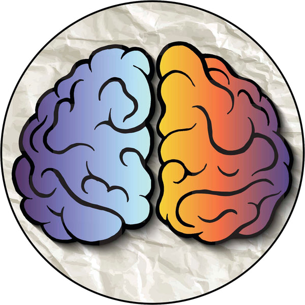 Left Right Brain Cartoon Icon #2 Border Around Image As Shown Vinyl Sticker