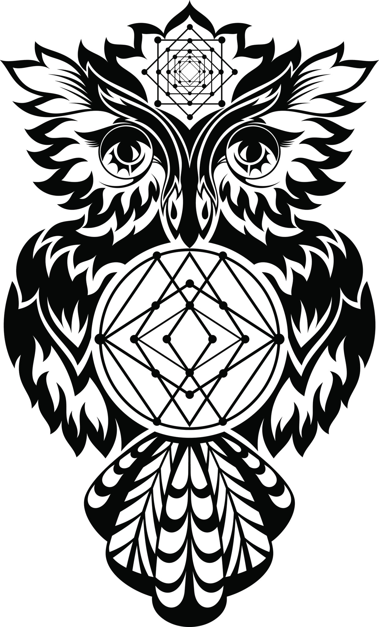 Pretty Fiery Feathered Owl with Constellations Vinyl Decal Sticker