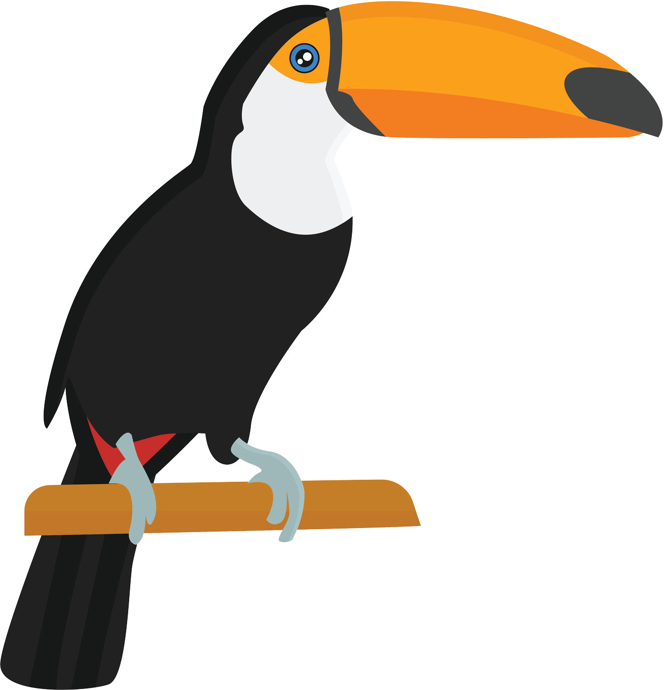 Pretty Kindergarten Toucan Bird on Perch Cartoon Vinyl Decal Sticker