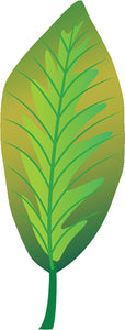 Pretty Paint Art Cartoon Leaf Leaves - Summer Green #1 Vinyl Decal Sticker