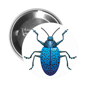Round Pinback Button Pin Brooch Simple Bug Insect Entomology Specimens Science Cartoon- Blue Beetle