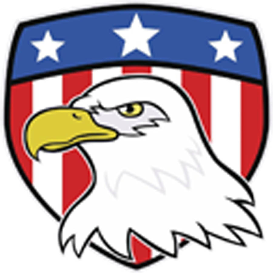 Simple Strong Bald Eagle with American Shield Cartoon Icon Vinyl Decal Sticker