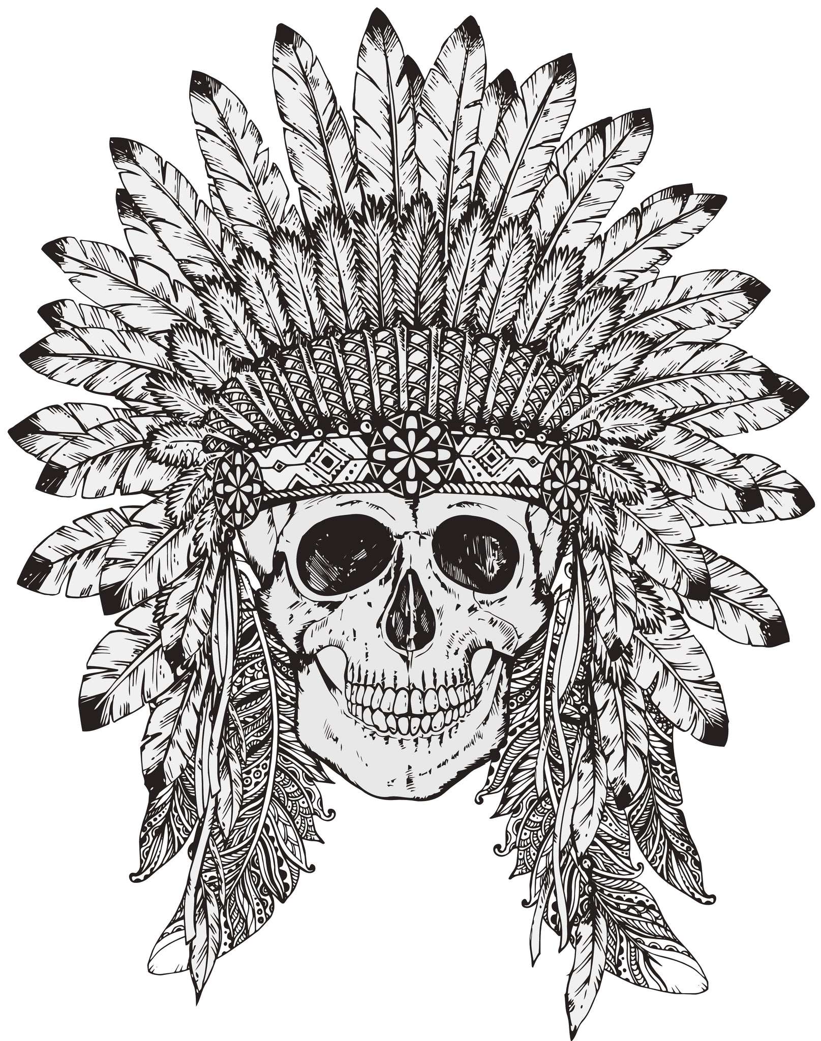 Skull with Elaborate Feathered Headdress Vinyl Decal Sticker