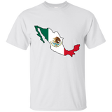 Mexico Flag and Country Outline