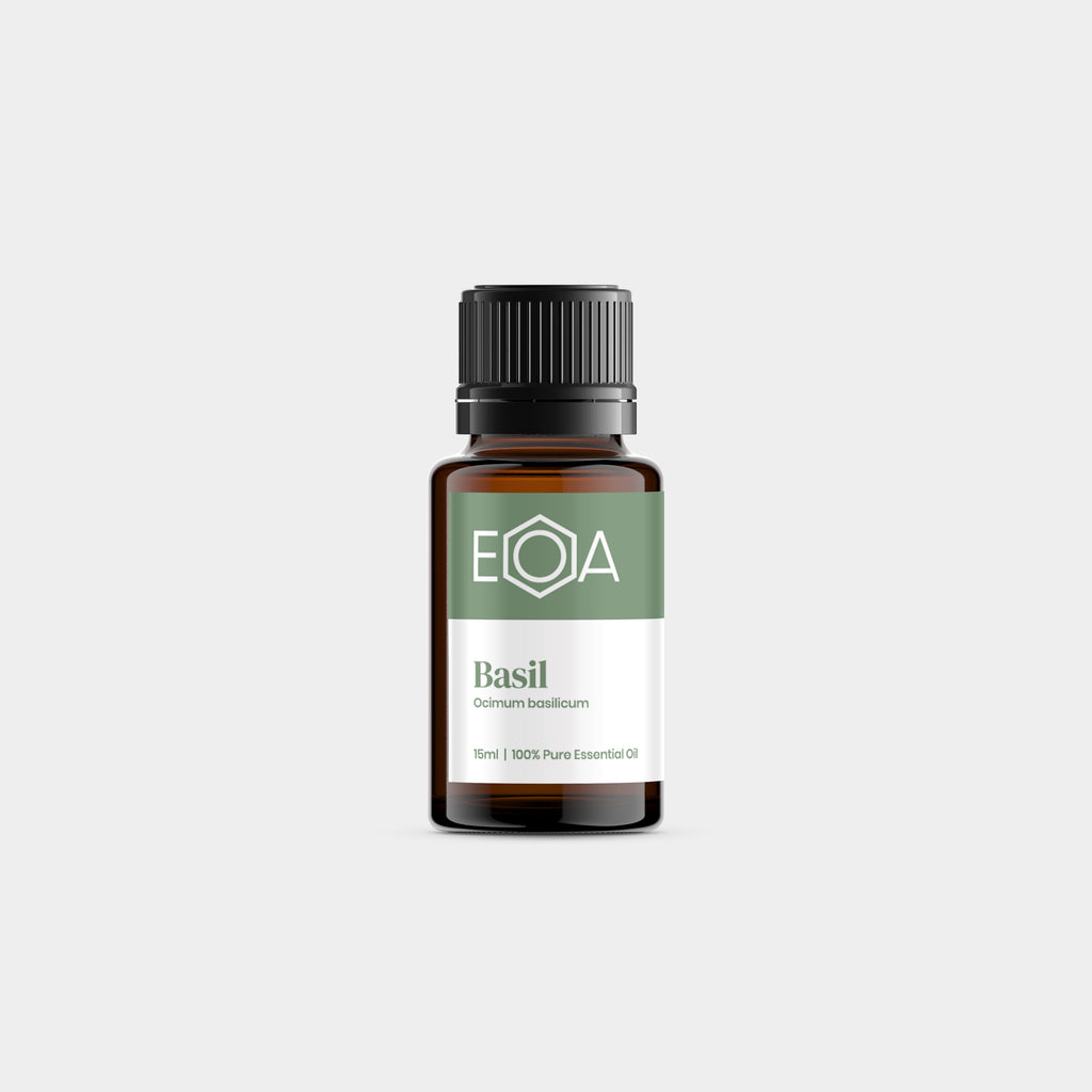 Basil Essential Oil, Sweet - 15ml