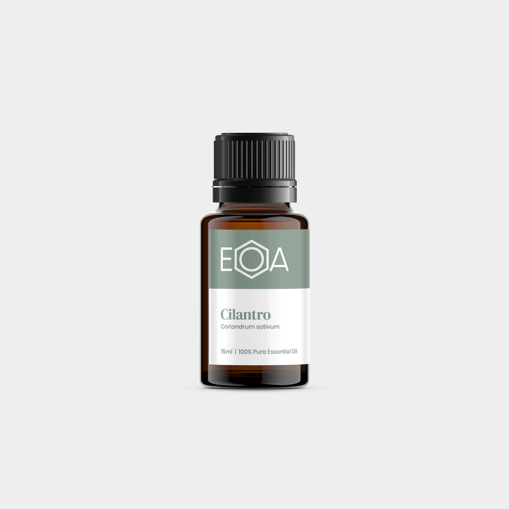 Cilantro Essential Oil - 15ml