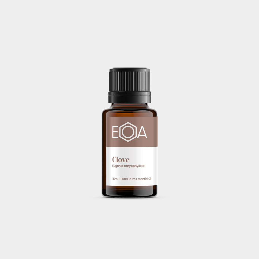 Clove Essential Oil - 15ml