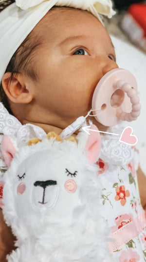 Load image into Gallery viewer, NEW! Pacifier/Teether PlushieClips - Little BaeBae