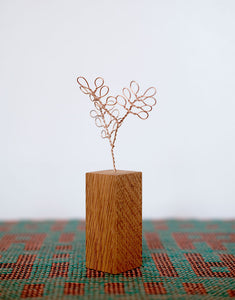 Copper Botanical Wire Drawing: Breynia Retusa