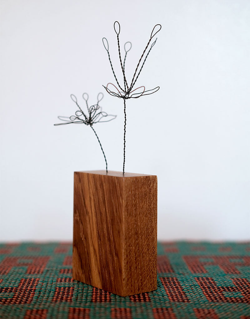 Steel Botanical Wire Drawing: Double Caesalpinia