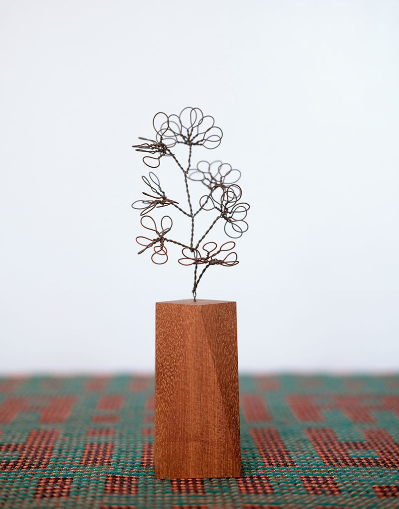 Steel Botanical Wire Drawing: Abstract Buxus