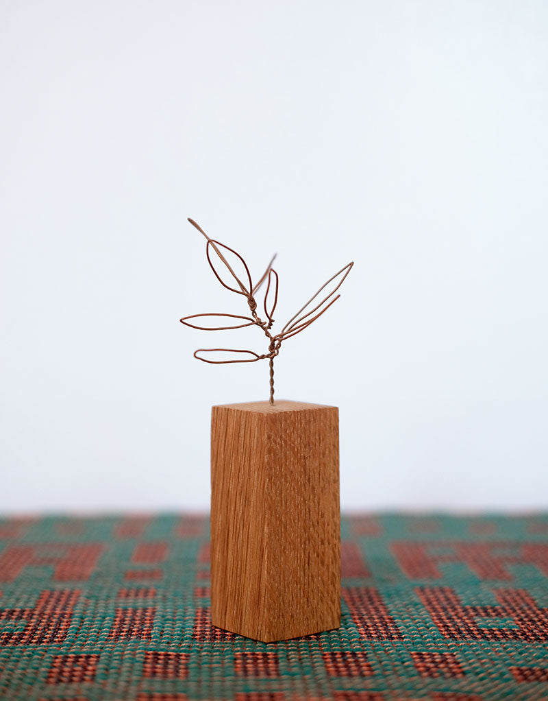 Copper Botanical Wire Drawing: Schefflera