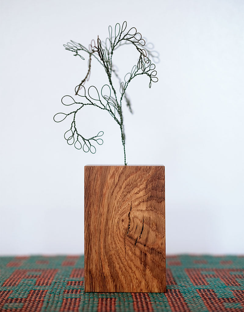 Botanical Wire Drawing: Curly Fern