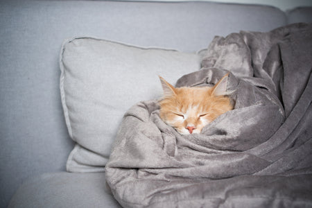 Sleep Benefits From Minky Blankets
