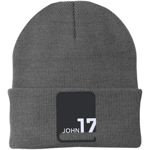 John 17 Grey Knit Cap