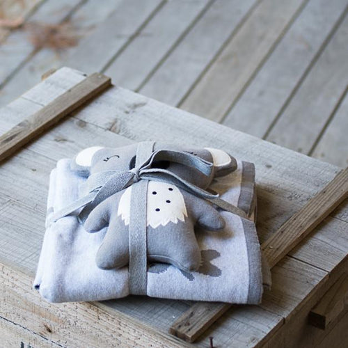Indus Koala Gift Pack with soft toy and blanket