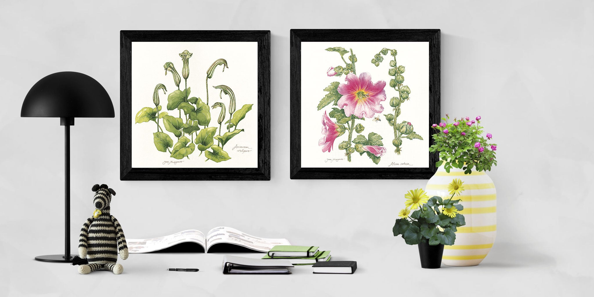 Botanical Flowers of Palestine in frames | Natural Wall Decoration