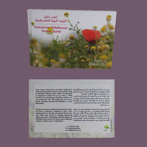 Palestinian Wildflowers Guide - A Pocket Book - Identify wildflowers in Palestine