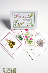Paper, Cards & Books - [Free Download Available] Palestinian Wildflower Pocket Guide