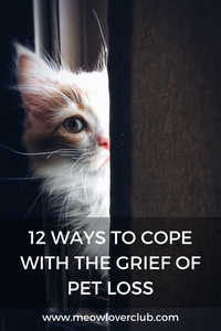 12 WAYS TO COPE WITH THE GRIEF OF PET LOSS