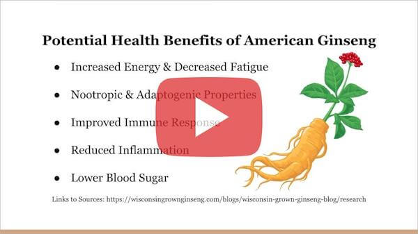 What Are the Health Benefits of Wisconsin Grown American Ginseng Root?
