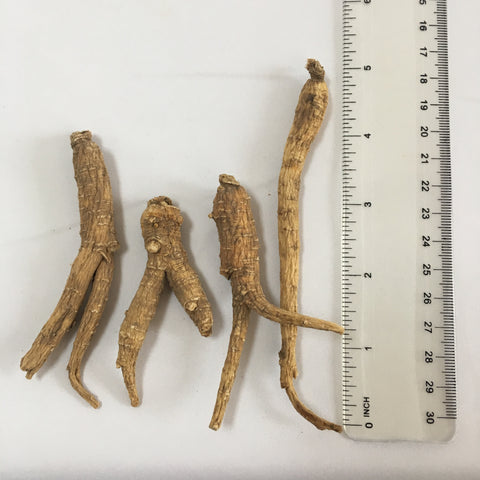 Do the size of ginseng roots matter?