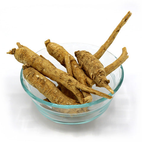 Wisconsin American Ginseng Root Jumbo