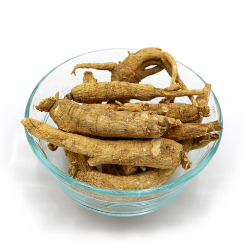 Wisconsin American Ginseng Root Size Large