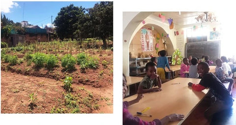 Photo of green crops in a small garden, next to photo of smiling school children at a table