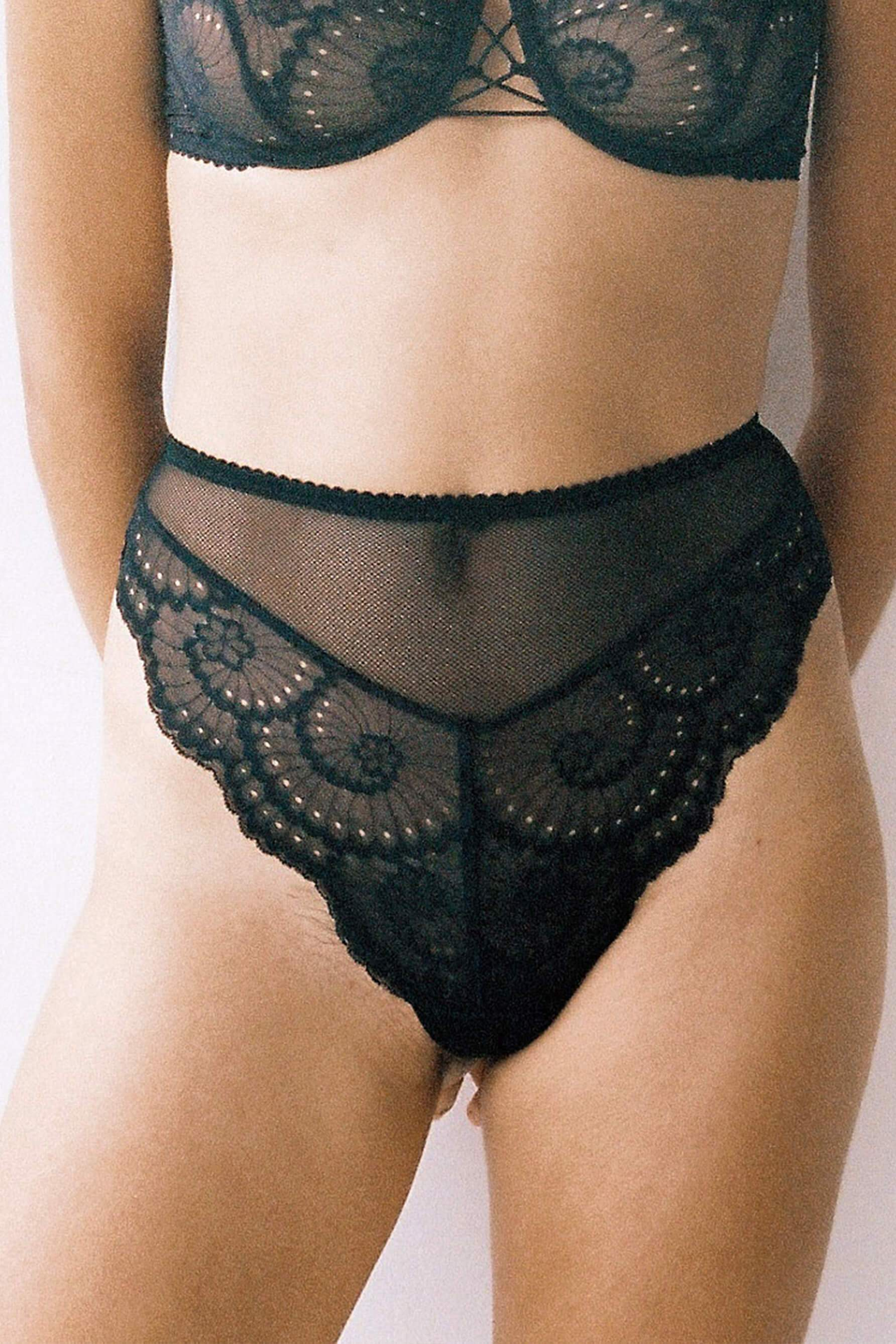 Lonely Delilah Black Sheer lace high waist brief underwear