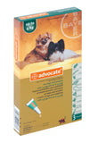 Advocate- Monthly Treatment in dogs and puppy older than 7 weeks and between 1-4kg. Treatment of fleas and their larvae, roundworm, hookworm, and ear mites as well as whipworm, biting lice, sarcoptes and demodex. It is also used in the prevention of heartworm.