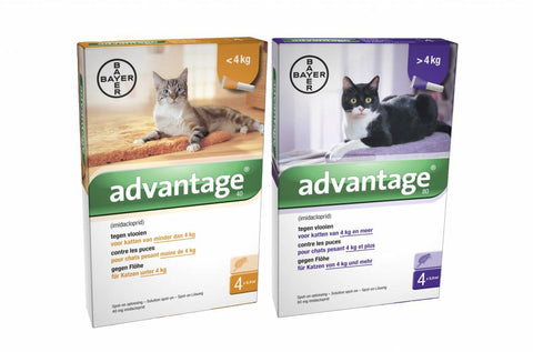 Advantage- A monthly application for the control of fleas on cats, kittens and rabbits.
