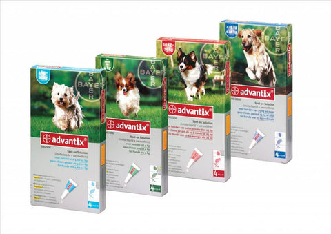 Advantix-A monthly application for the prevention and treatment of ticks, fleas, flies and mosquitoes on dogs and puppies
