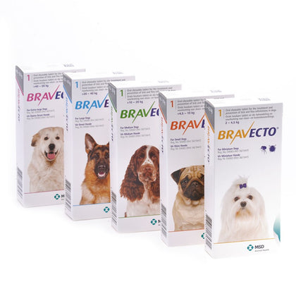 Bravecto is a chewable tick and flea treatment which provides up to 12 weeks of protection for dogs.
