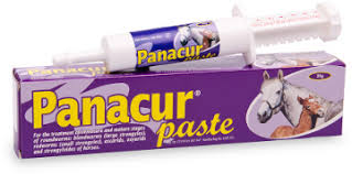 Panacur Paste- For the Teatment of Immature and mature stages of roundworms in horses. Treats up to 600kg horse