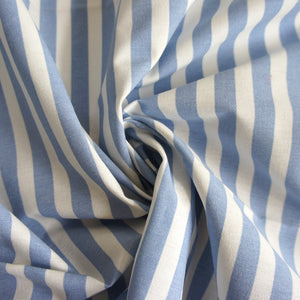 Blue and White Stripe Print