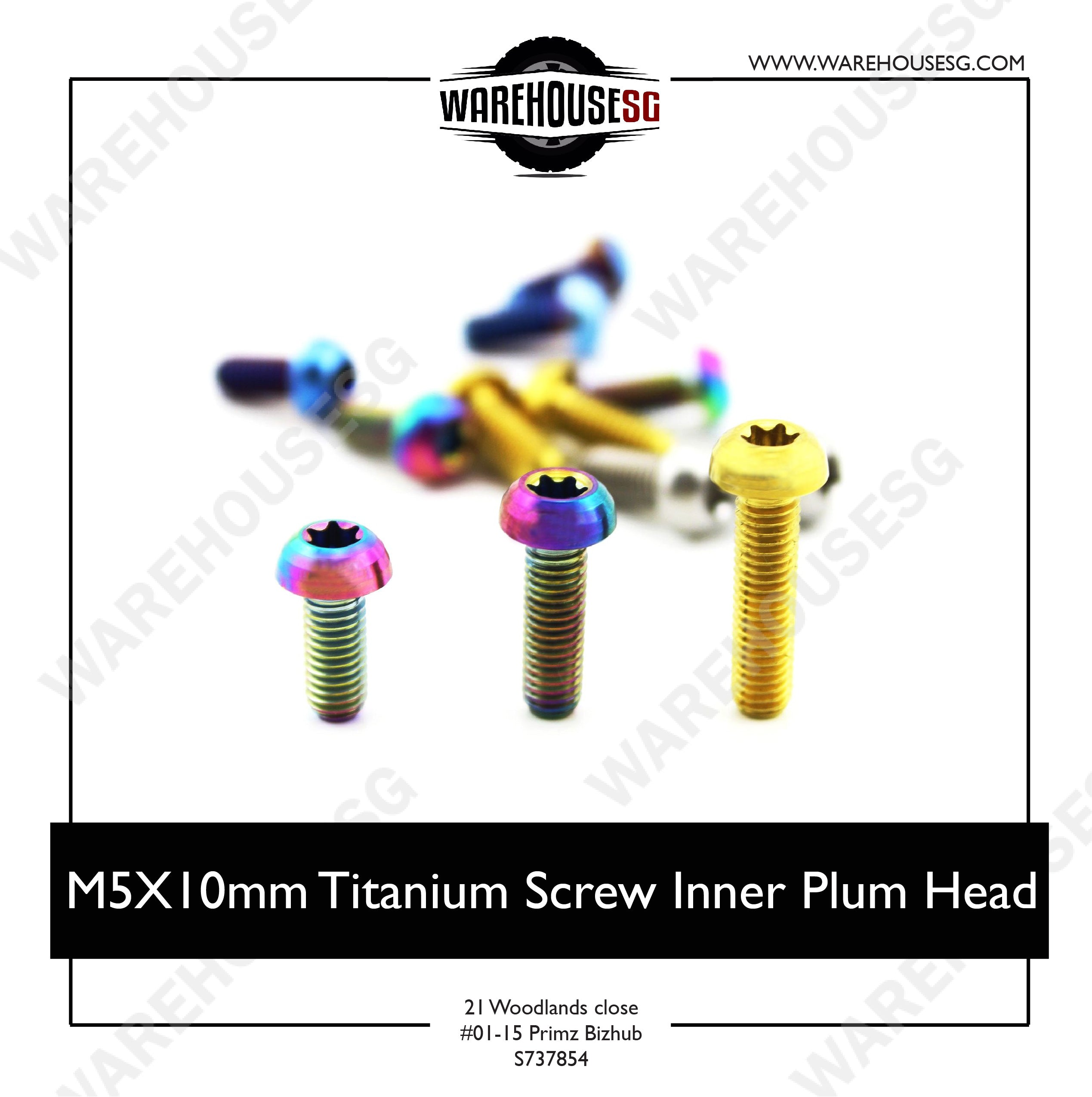 M5X10mm Titanium Screw Inner Plum Head