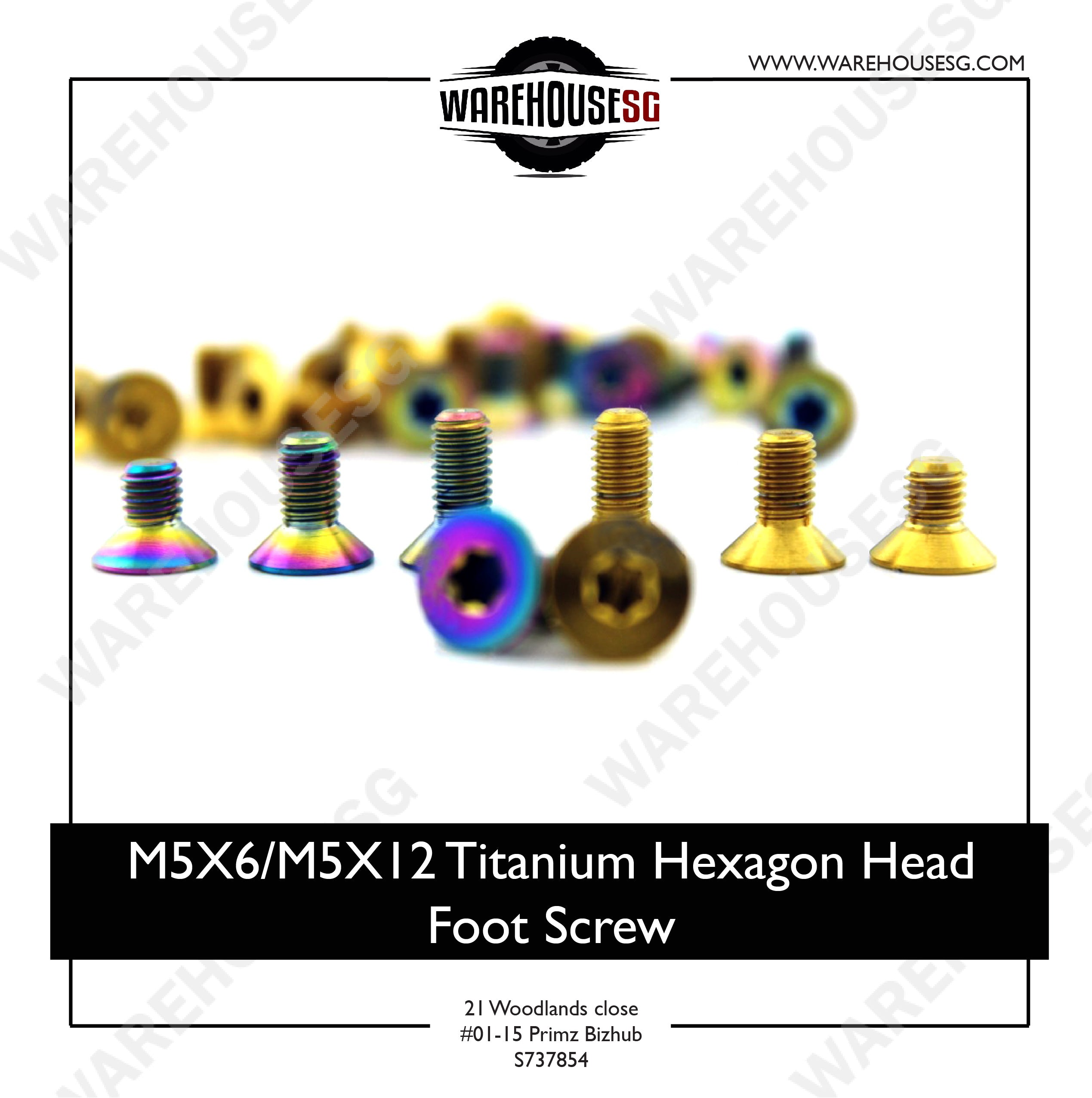 M5X6/M5X12 Titanium Hexagon Head Foot Screw