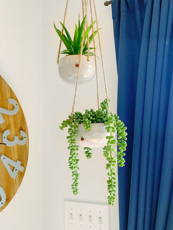 Hanging Planter Small