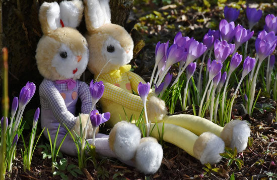 stuffed bunnies sit in purple spring flowers