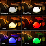 Multicolor Dolphin Night Light
