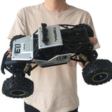 4WD 1/16 RC Monster Truck