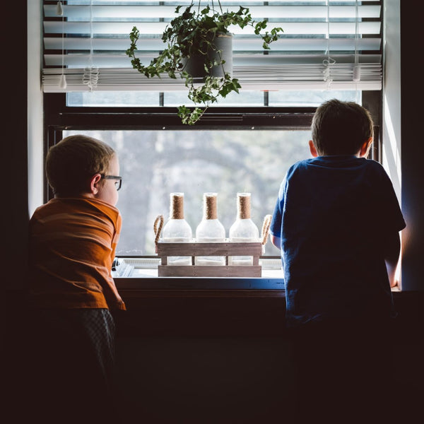 Two boys with their backs to us looking out the window