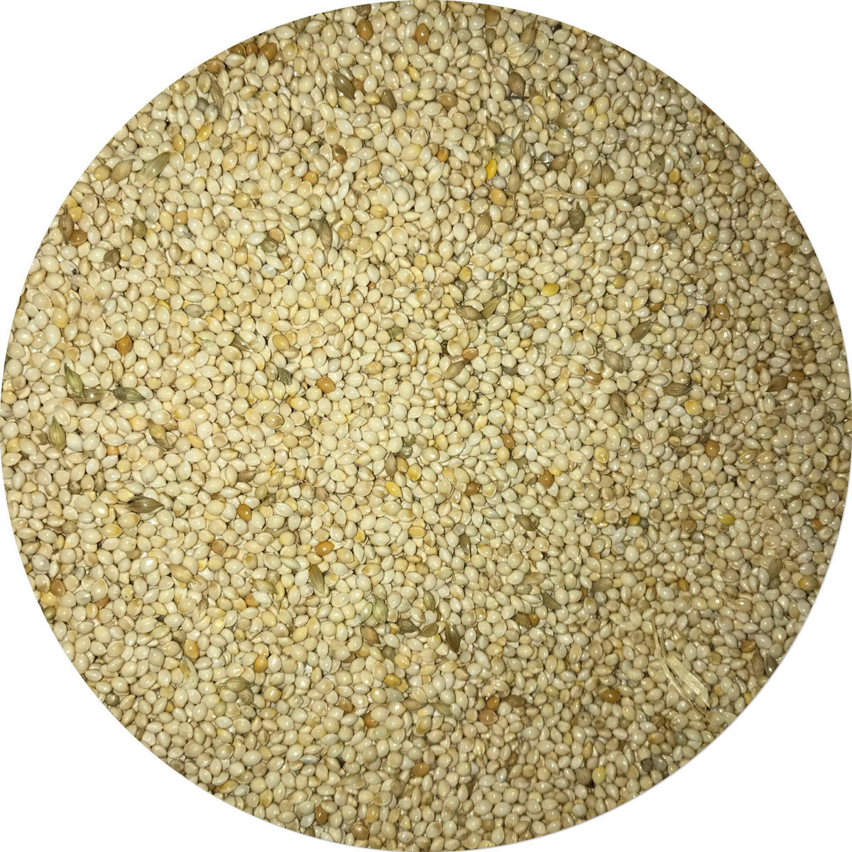 White French Millet