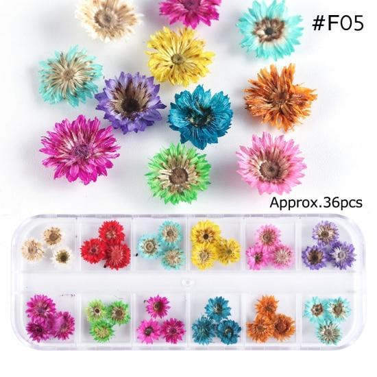 PINkart-USA F05 Mix Dried Flowers Nail Decorations Jewelry Natural Floral Leaf Stickers 3D Nail Art Designs
