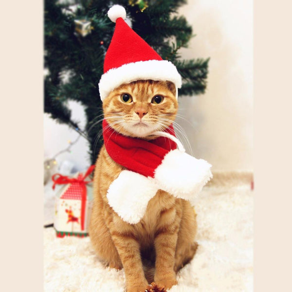 PINkart-USA Online Shopping Christmas Accessories For Dogs Hat & Scarf Suit Cat Xmas Costume New Year Decorations Cap Pet