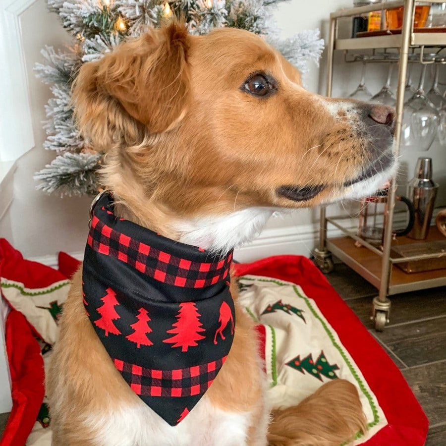 Woodland Winter Pet Bandana