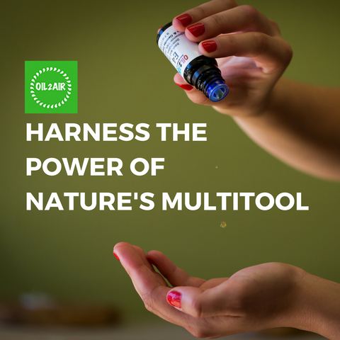 Essential Oils: Nature's Multi-tool