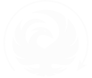 Flying Solo Gear Company phoenix logo